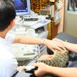 入院・通院・手術を減らす為の医療やケアの提案