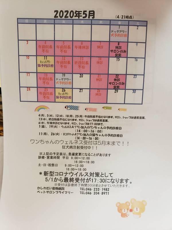 5月の休診日のお知らせ☆
