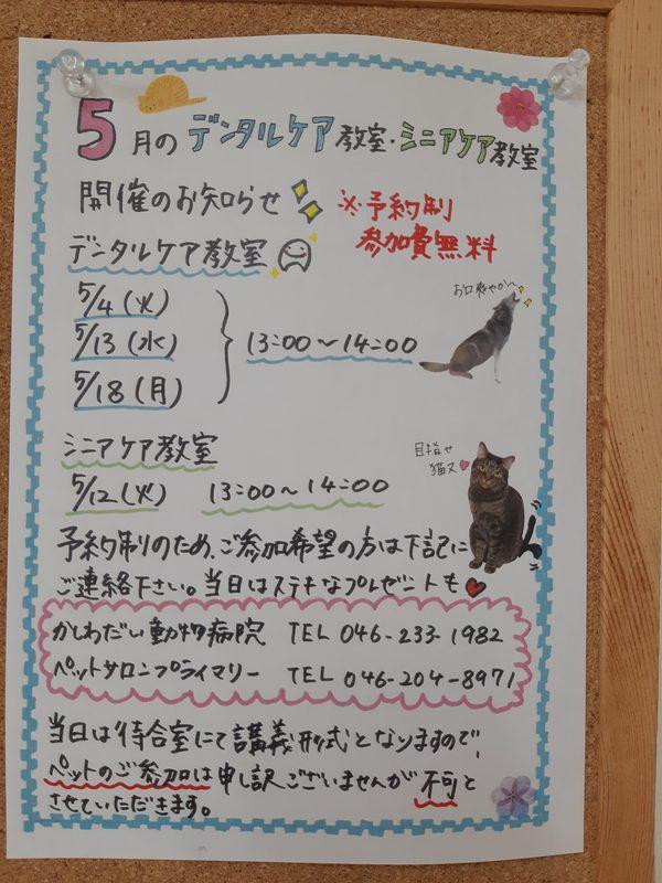 5月の教室のお知らせ☆