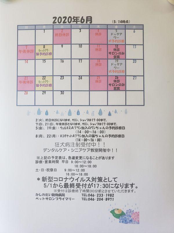 6月の休診日のお知らせ☆