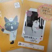猫も動物病院プロジェクト☆