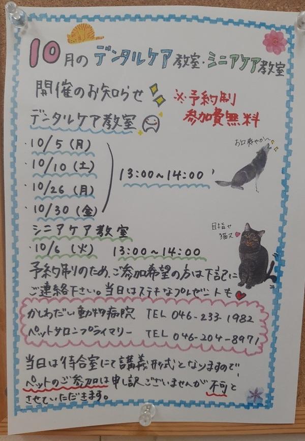 10月の教室のお知らせ☆