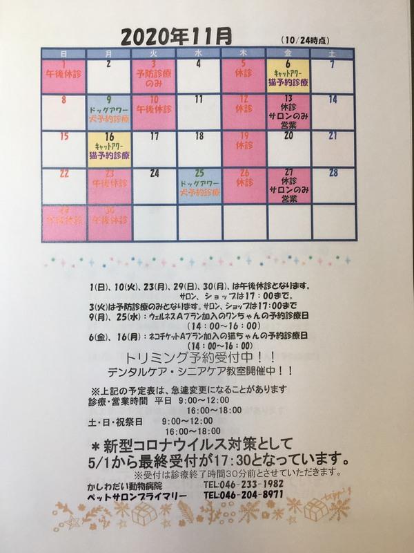 11月の休診日のお知らせ☆