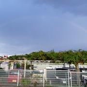 虹が出ていました!
