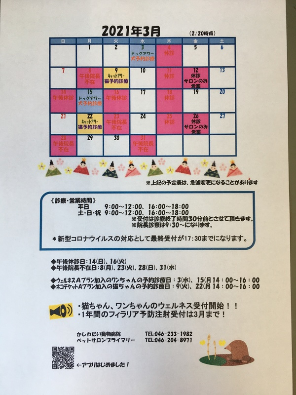 3月休診日のお知らせ☆