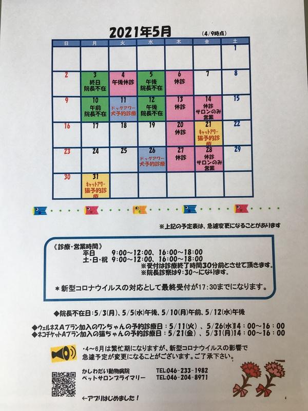 5月休診日のお知らせ☆