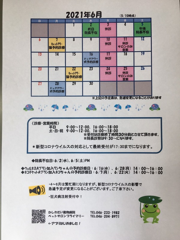6月休診日のお知らせ☆
