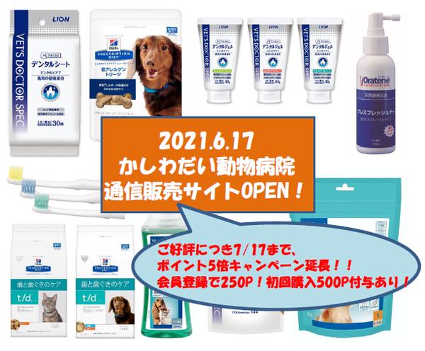 通販サイト☆ポイント5倍キャンペーン延長!