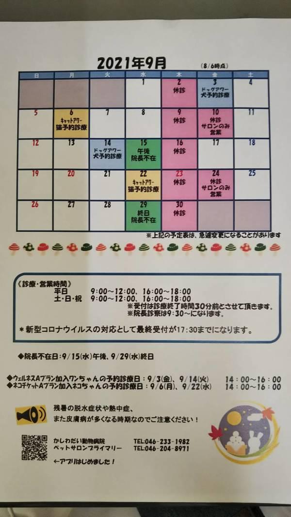 9月休診日のお知らせ☆(9/9更新)