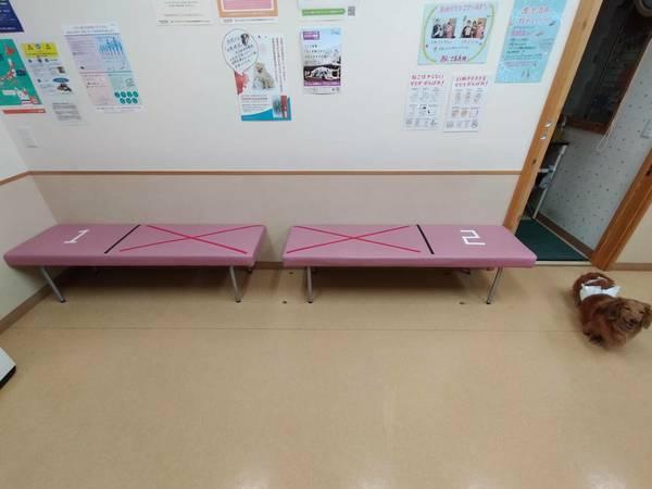 当院でのコロナ感染対策について