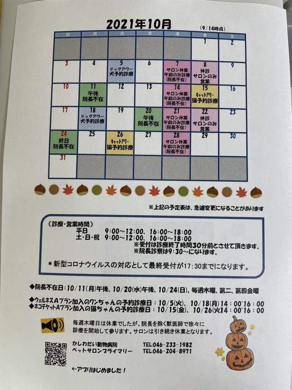 10月休診日のお知らせ☆(9/14更新)